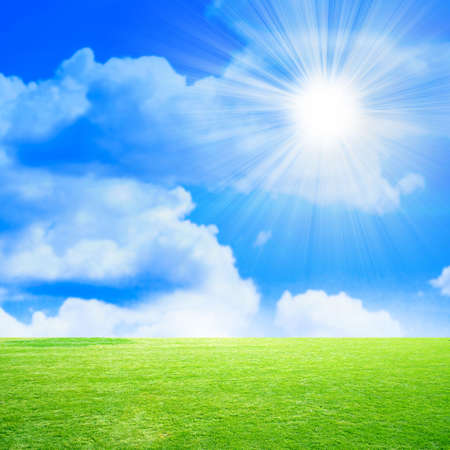 non urban scene: green meadow on background brightly blue shining sky