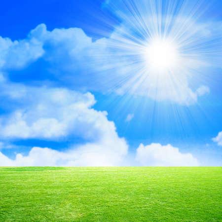 lea: green meadow on background brightly blue shining sky