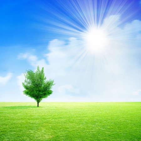 remote view: sun and meadow on background blue shining sky