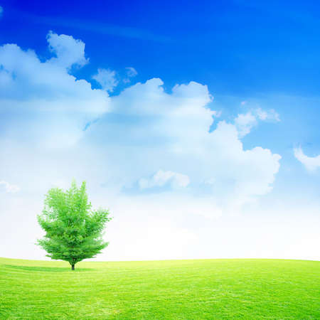 non urban scene: abstract scene green meadow under beautiful sky