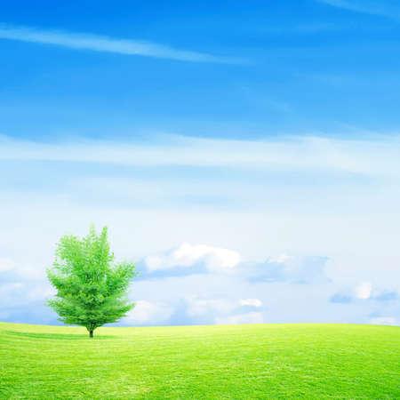 abstract scene green meadow under beautiful sky