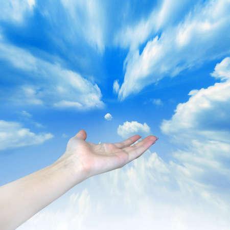 revealling palm on background blue sky