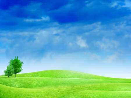 beautiful year landscape with solar sky Stock Photo - 4479882