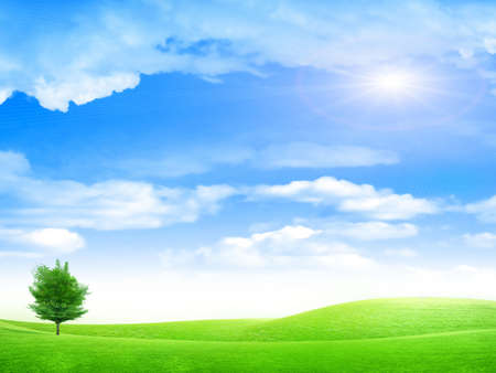 beautiful year landscape with solar sky Stock Photo - 4479860