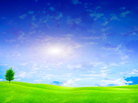 beautiful year landscape with solar sky photo