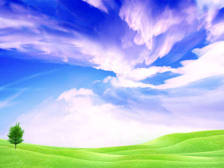 beautiful year landscape with solar sky Stock Photo - 4479827