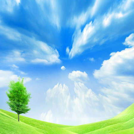 beautiful year landscape with solar sky Stock Photo - 4479863