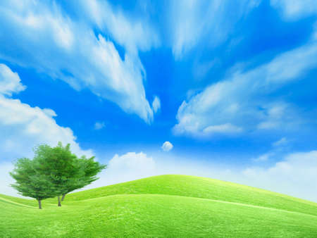 beautiful year landscape with solar sky Stock Photo - 4479885