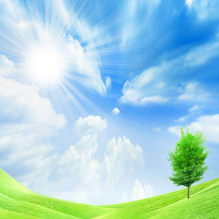 beautiful year landscape with solar sky Stock Photo - 4479867