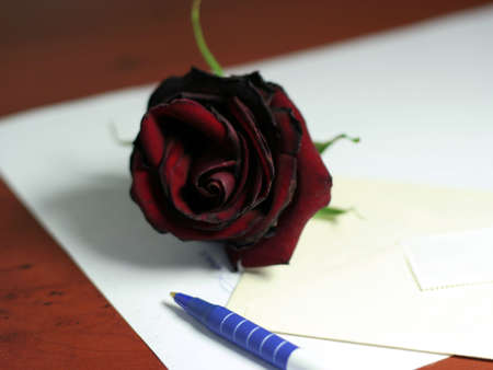 festal: dark red rose and accesories for writing letter Stock Photo