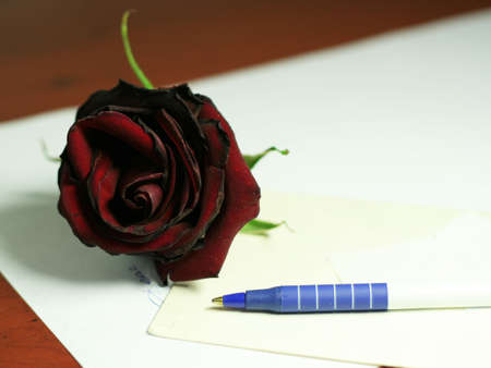 dark red rose and accesories for writing letter photo