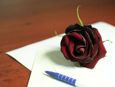 accesories: dark red rose and accesories for writing letter Stock Photo