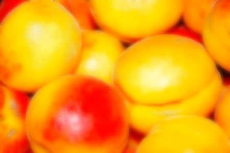 apricot Stock Photo - 4670196