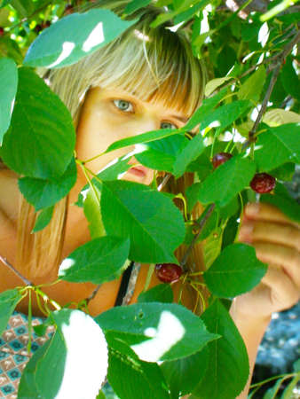 making look younger girl collects harvest in garden photo