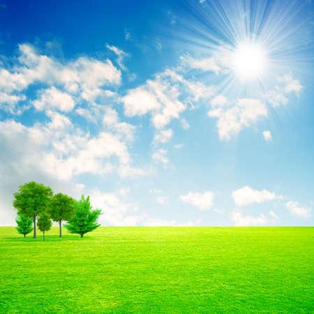 horizon over land: green meadow under beautiful solar sky