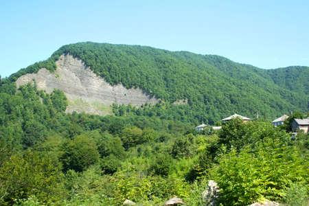 Mountain meadow Stock Photo - 6562516