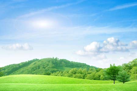 blue sky on green meadow