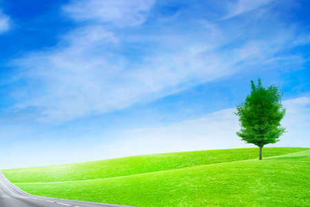 green abstract plain under solar sky Stock Photo - 6552716