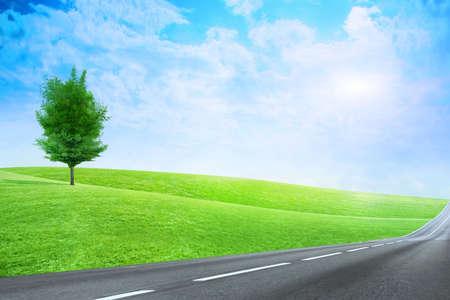 太陽の空の下で明白な緑の抽象