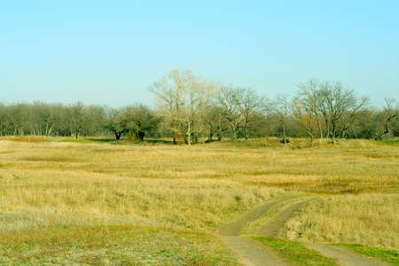 autumn landscape as rural background photo