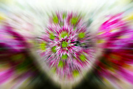 floral background Stock Photo - 8539667