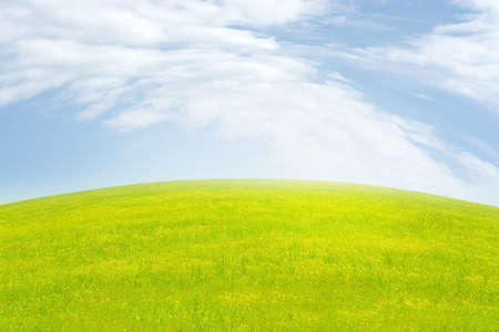green meadow and blue sky as summer background Stock Photo - 9689567