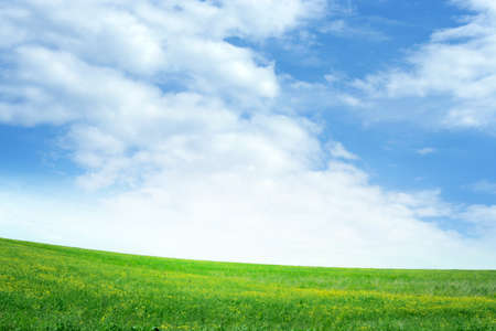 green meadow and blue sky as summer background Stock Photo - 9689552