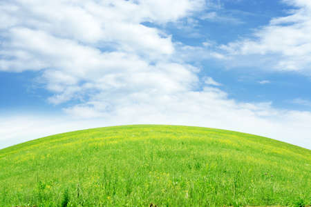 green meadow and blue sky as summer background Stock Photo - 9689558