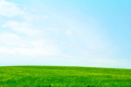 green meadow and blue sky as summer background Stock Photo - 9689569