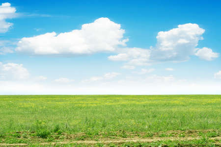 green meadow and blue sky as summer background Stock Photo - 9689581