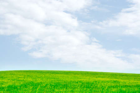 green meadow and blue sky as summer background Stock Photo - 9689571