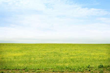 Prato verde e blu cielo come sfondo di estate Archivio Fotografico - 9696522