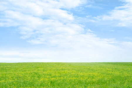 green meadow and blue sky as summer background Stock Photo - 9689572