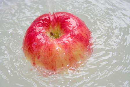 apple Stock Photo - 10898294