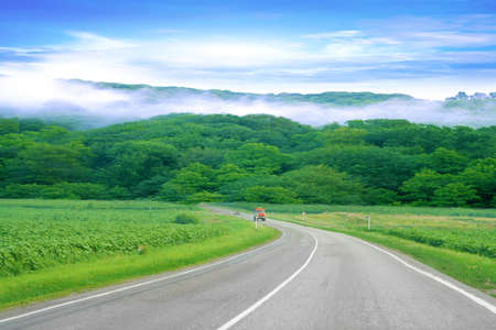 sulight: road as travel background Stock Photo