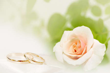 abstract rose and wedding rings photo