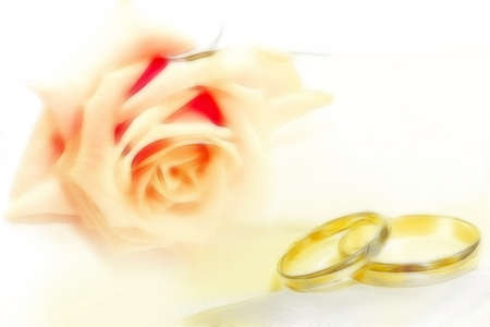 abstract wedding rings as celebration background Stock Photo - 11343727