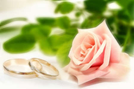 scene with wedding rings as celebration background  photo