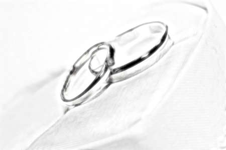 scene two rings as symbol holiday wedding ceremony Stock Photo - 13563649