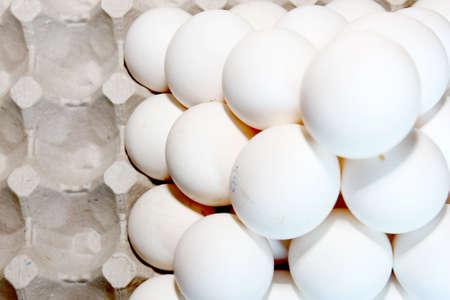 scene chicken egg built for transportation or keeping Stock Photo - 13688534