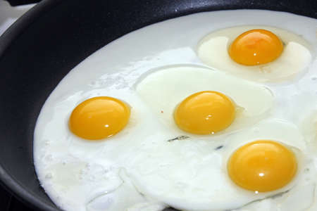 preparation fried eggs on pan for matutinal meal Stock Photo - 14768977