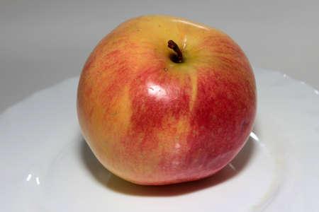 scene beautiful ripe apple as symbol summer Stock Photo - 16460230