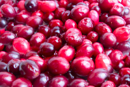 ripe berry cranberry as product rich vitamin photo