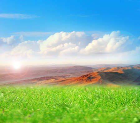 beautiful solar landscape with herb on meadow and sky photo