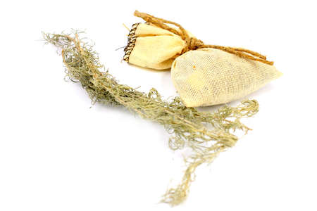 medical herb wormwood and linen bag for conservation photo