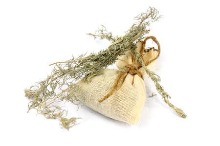 sagebrush: medical herb wormwood and linen bag for conservation