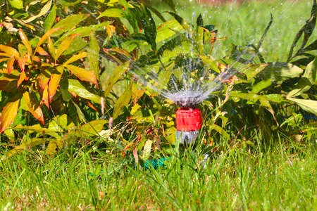 irrigate: a water spray sprinkler as a tool to irrigate grass
