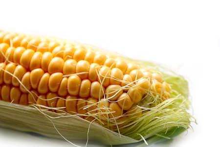 beautiful ear of ripe corn as a food item Stock Photo