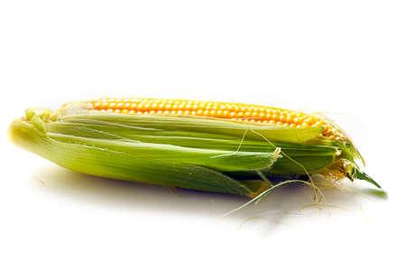 produits céréaliers: belle épi de maïs mûr comme un produit alimentaire