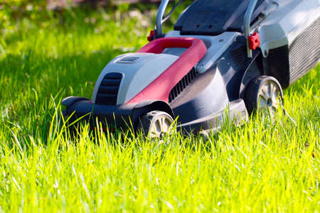 cutter: Beautiful fresh green grass on lawn and electric lawn mower Stock Photo
